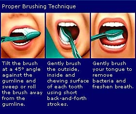 Toothbrushes - Dr. Jauhal Articles